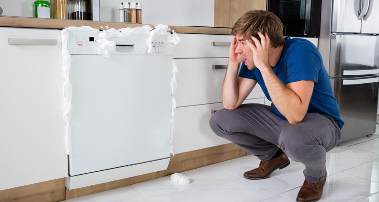 Common Dishwasher Problems Solutions