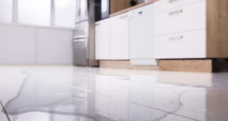 Is Your Fridge Freezer Leaking Water?